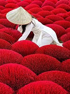 Bilder Felder Rot Der Hut Natur Mädchens