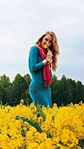 Hintergrundbilder Felder Raps Blond Mädchen Kleid Lächeln Schal Mädchens