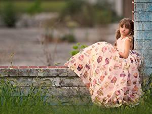 Hintergrundbilder Kleine Mädchen Sitzt Kleid Braunhaarige Kinder