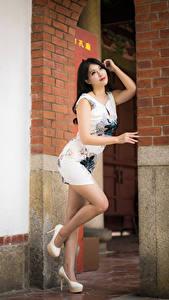 Bilder Asiaten Posiert Kleid Bein High Heels Brünette junge frau
