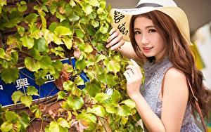 Hintergrundbilder Asiatisches Strauch Der Hut Braunhaarige Blick Hand Mädchens