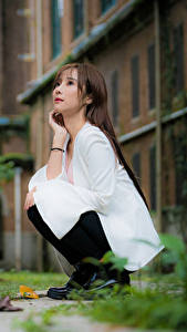 Bilder Asiaten Unscharfer Hintergrund Sitzt Braune Haare Niedlich junge frau
