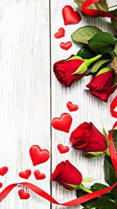 Hintergrundbilder Valentinstag Rosen Bretter Rot Herz Band Blumen