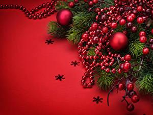 Bilder Neujahr Beere Roter Hintergrund Ast Schneeflocken Kugeln