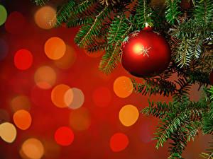 Hintergrundbilder Neujahr Ast Kugeln