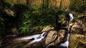 Hintergrundbilder Spanien Wälder Steine Bäche El Sallent Catalonia Natur