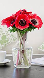Fotos Stillleben Sträuße Windröschen Tasse Rosa Farbe Blumen