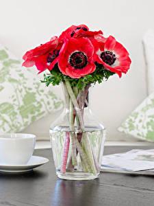 Fotos Stillleben Blumensträuße Anemonen Tasse Rosa Farbe Blüte