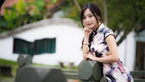 Fotos Asiaten Brünette Posiert Kleid Bokeh Hand junge frau