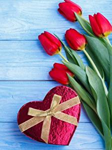 Papel de Parede Desktop Dia dos Namorados Tulipas Laço Tábuas de madeira Coração Flores
