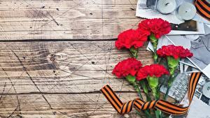 Hintergrundbilder Tag des Sieges 9 Mai Nelken Bretter Blumen