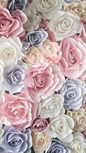 Hintergrundbilder Rosen Viel Textur Blumen