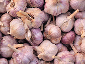 Bilder Knoblauch Großansicht Textur Lebensmittel