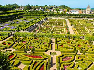 Bilder Frankreich Garten Design Strauch Chateau de Villandry gardens Natur
