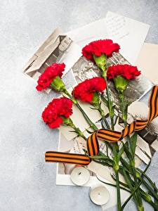 Images Victory Day 9 May Carnations Flowers