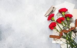 Papéis de parede Dia da Vitória 9 de maio Dianthus flor