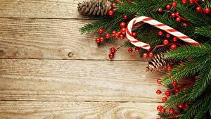 Fotos Beere Neujahr Bretter Ast Vorlage Grußkarte