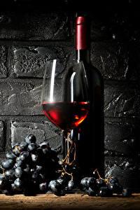 Bilder Wein Weintraube Mauer Flasche Weinglas