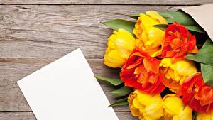 Hintergrundbilder Tulpen Bretter Vorlage Grußkarte Blatt Papier Blumen