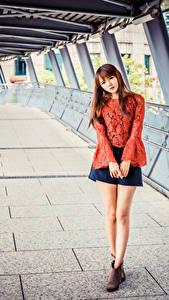 Bilder Asiaten Braune Haare Pose Rock Bluse Blick Mädchens