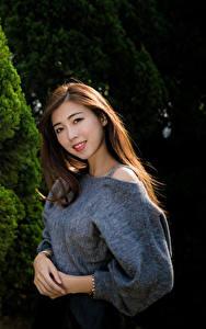 Bilder Asiatisches Braune Haare Lächeln Blick junge Frauen