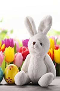 Hintergrundbilder Feiertage Ostern Tulpen Kaninchen Eier Sitzen Blumen