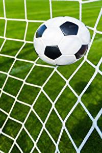 Wallpaper Footbal Ball Sports nets Sport