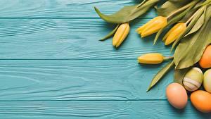 Papéis de parede Tulipas Páscoa Ovos Tábuas de madeira flor