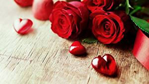 Images Roses Valentine's Day Red Heart Flowers