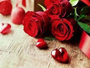 Papéis de parede Rosas Dia dos Namorados Vermelho Coração flor
