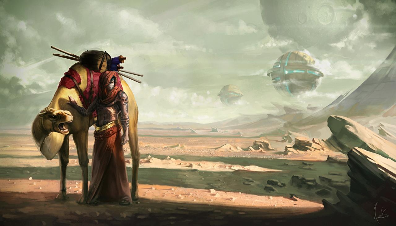 Immagine cammello Deserto Fantasy Mondo fantastico Cammelli
