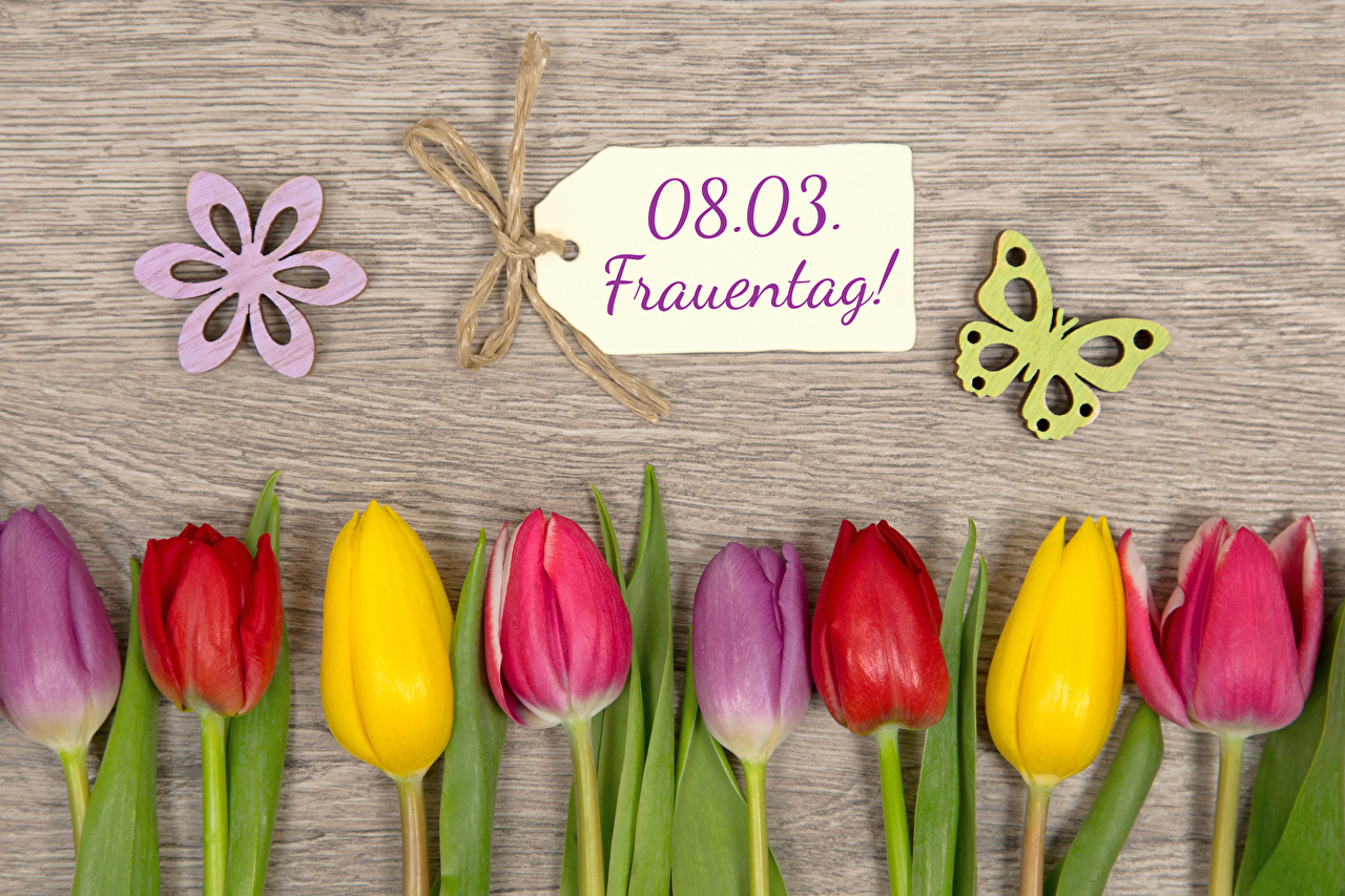 Pictures March 8 Butterflies German Multicolor Tulips Flowers Wood planks International Women's Day Boards