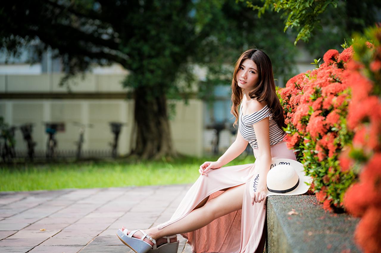 Fotos Braune Haare Der Hut Mädchens Bein Asiatische sitzt Blick Braunhaarige junge frau junge Frauen Asiaten asiatisches sitzen Sitzend Starren