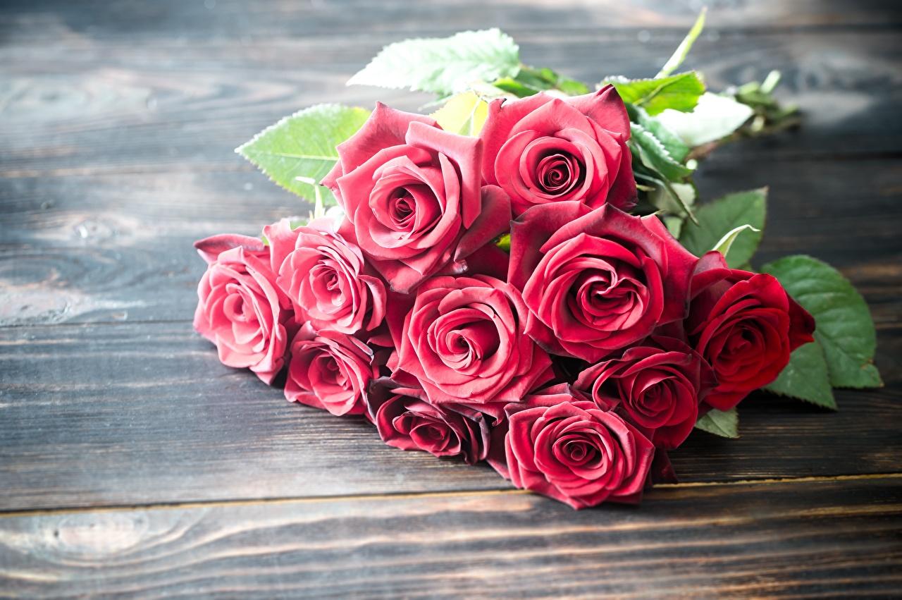 Achtergrond Boeketten roos Rood bloem Planken boeket Rozen Bloemen
