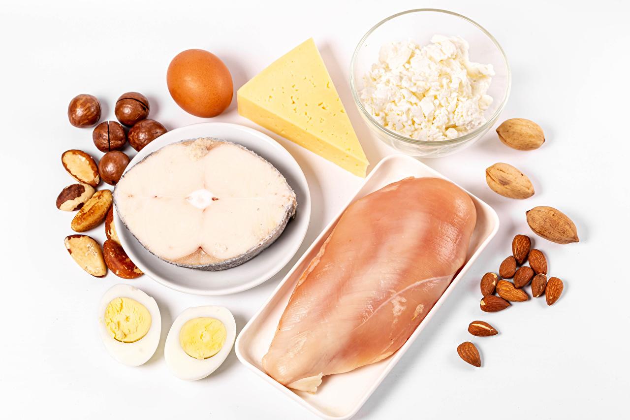 Afbeelding Hazelnoot een ei Kwark Kippenvlees kazen Vissen - Voedsel Voedsel Noten Vleesproducten Witte achtergrond Eieren Kaas spijs