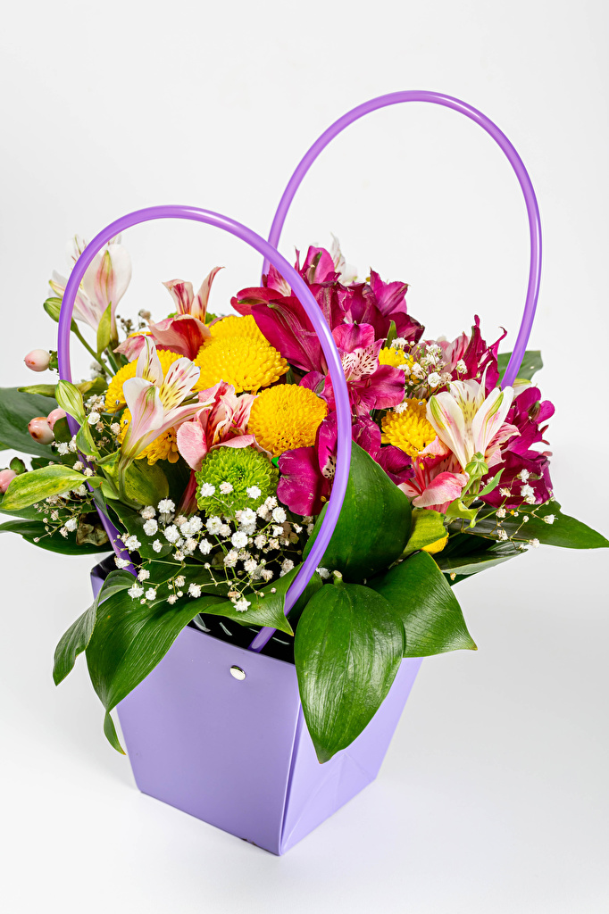 Desktop Wallpapers bouquet Flowers Alstroemeria Wicker basket Chrysanthemums White background  for Mobile phone Bouquets Mums flower Chrysanths