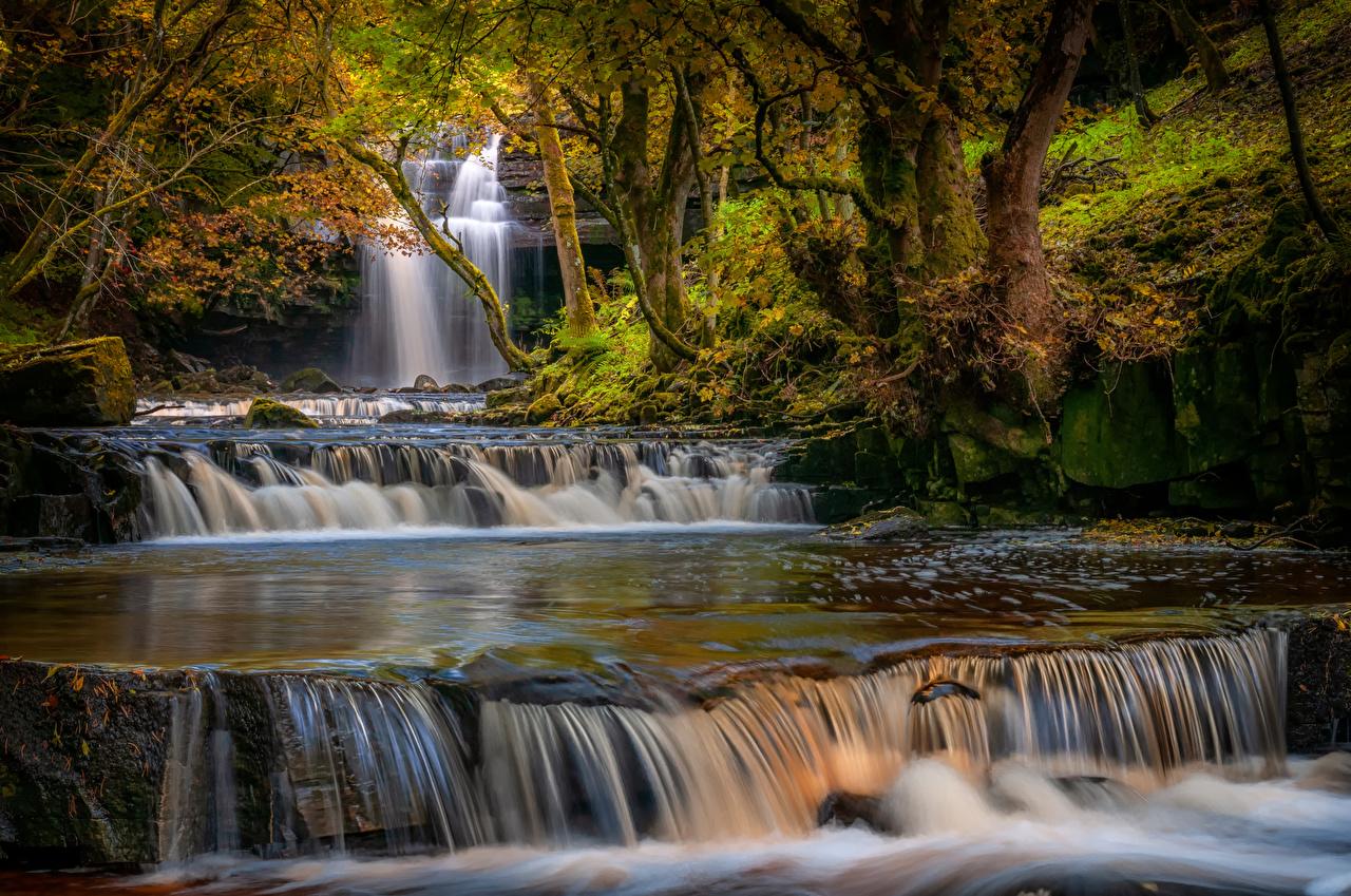 Wallpaper England County Durham Autumn Nature Waterfalls Moss Trees