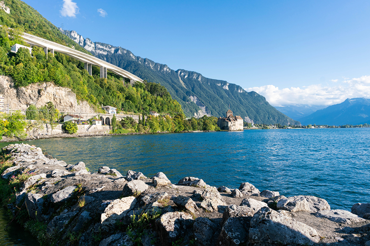 Photo Switzerland lake Geneva Cliff Nature Lake Coast Stones Crag Rock stone