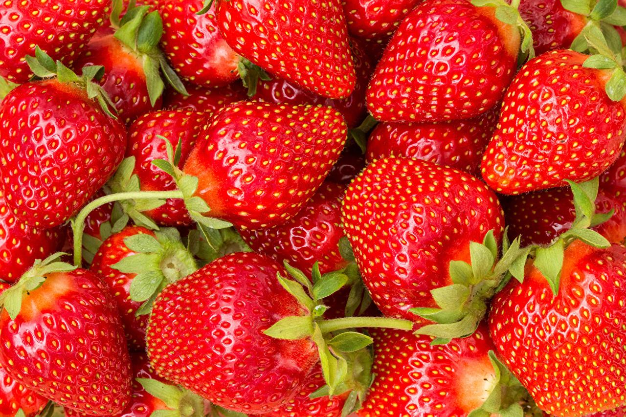 Fotos von Erdbeeren Lebensmittel Viel Großansicht das Essen hautnah Nahaufnahme