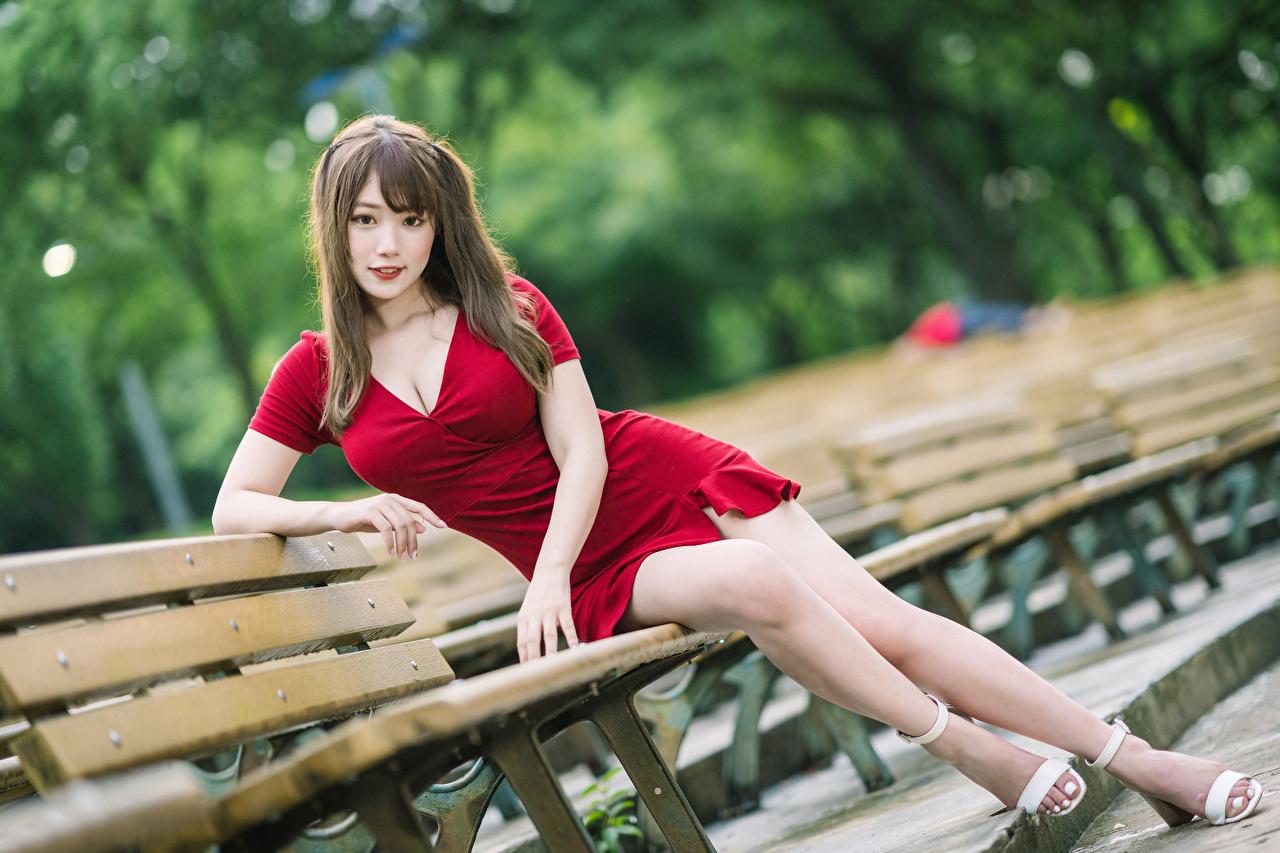 Fotos Mädchens Bein Asiaten sitzt Bank (Möbel) Starren Kleid junge frau junge Frauen Asiatische asiatisches sitzen Sitzend Blick