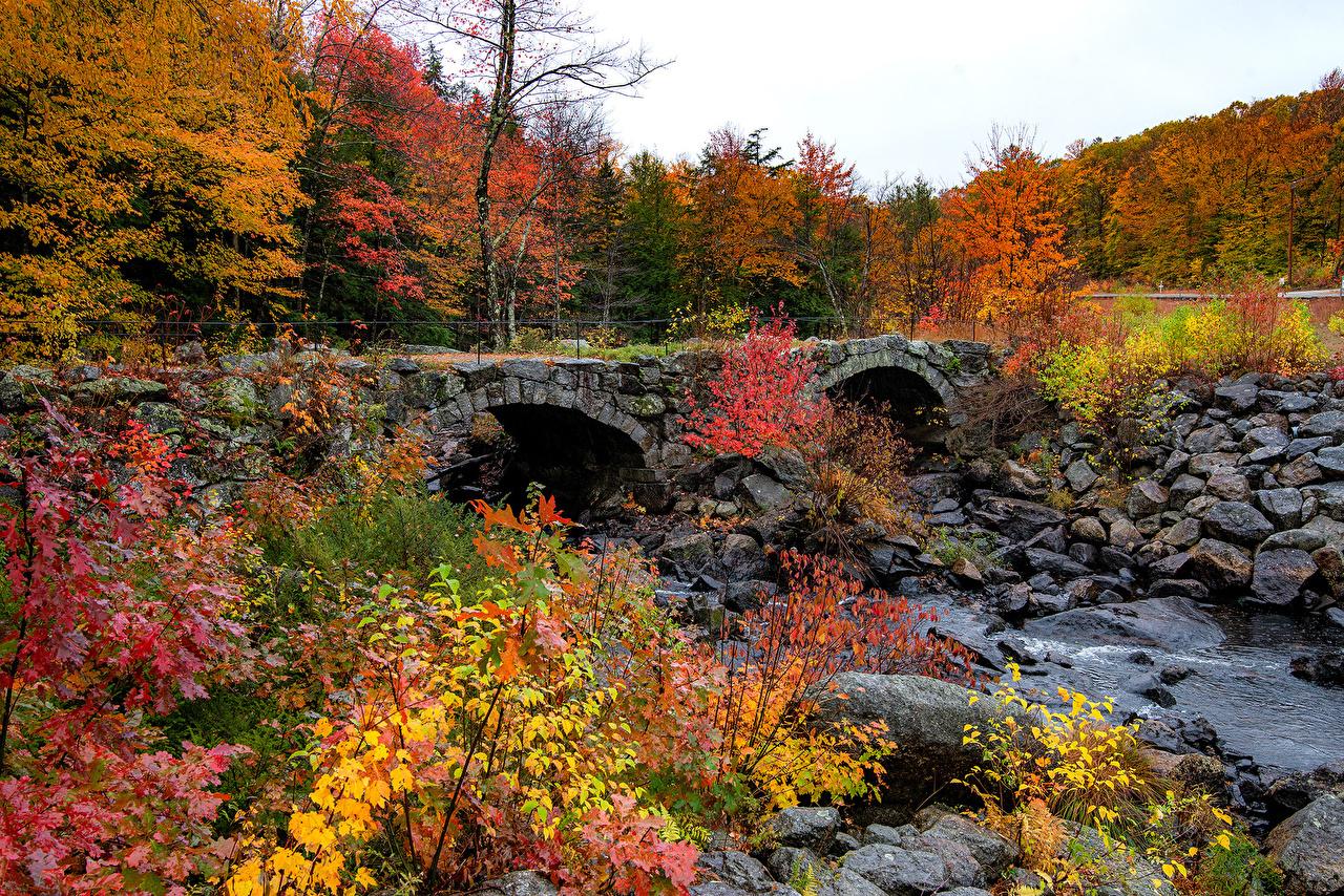 Desktop Wallpapers USA Woodstock, Vermont Autumn Nature Bridges Forests stone Branches bridge forest Stones