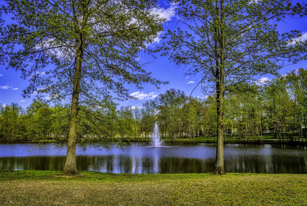 EE.UU. Parque Lago Fuente New Jersey árboles parques, Estados Unidos Naturaleza