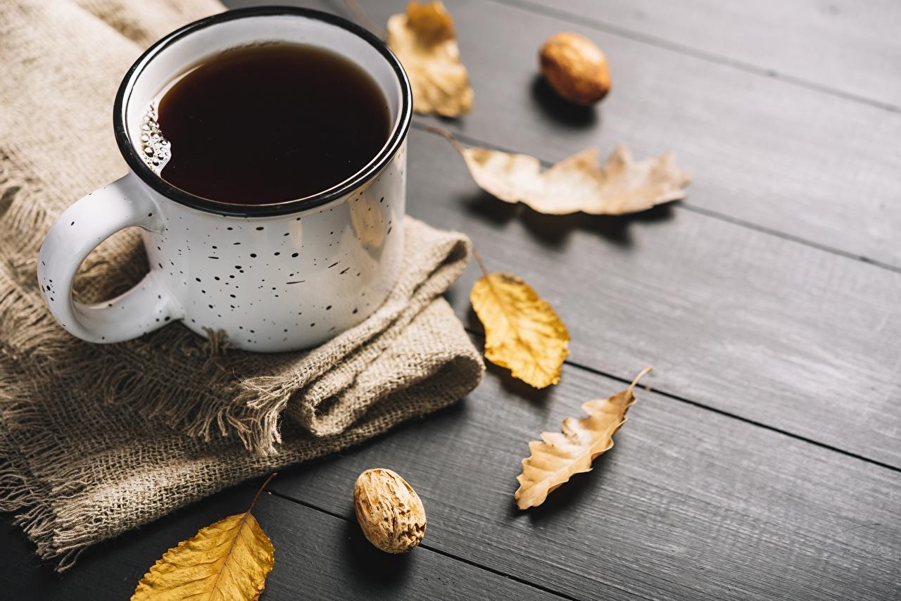 Photos Foliage Coffee Mug Food Leaf