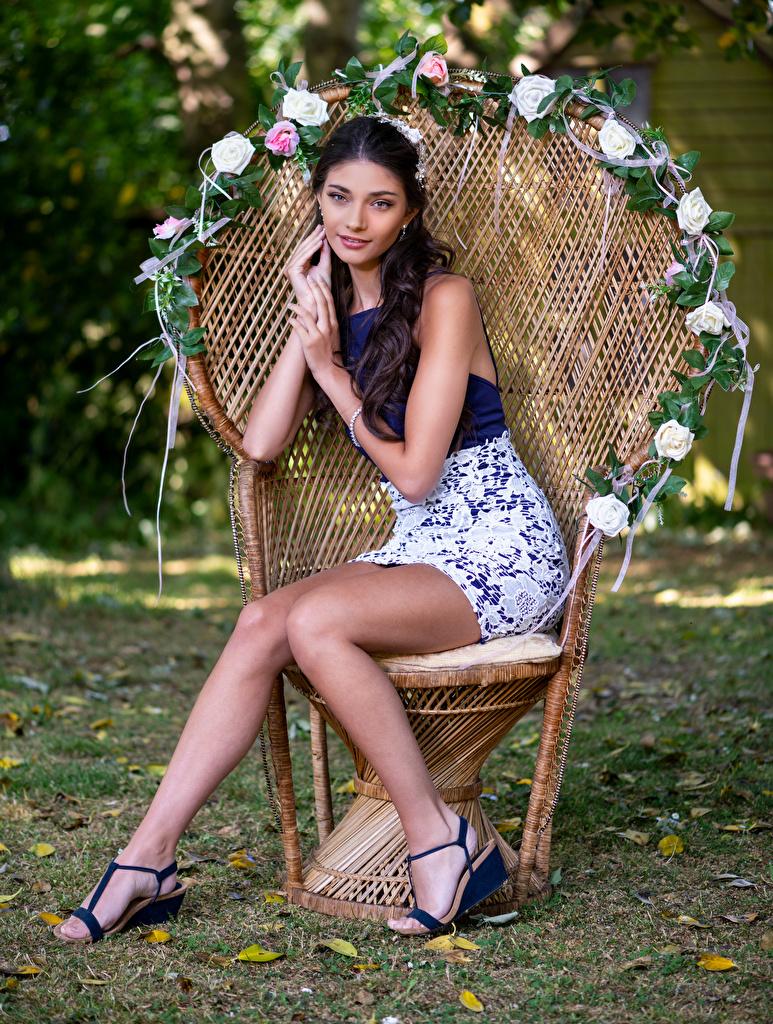 Bilder Model Elle junge Frauen Bein Sessel sitzen Blick  für Handy Mädchens junge frau sitzt Sitzend Starren