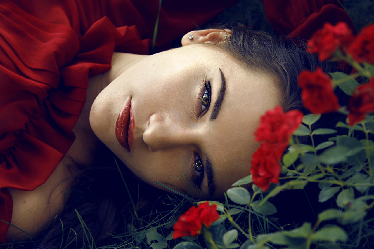 Bilder von Braunhaarige Rosen Gesicht Mädchens Blick Braune Haare Starren