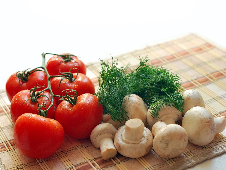 Desktop Hintergrundbilder Zucht-Champignon Tomate Dill Pilze Lebensmittel Tomaten das Essen
