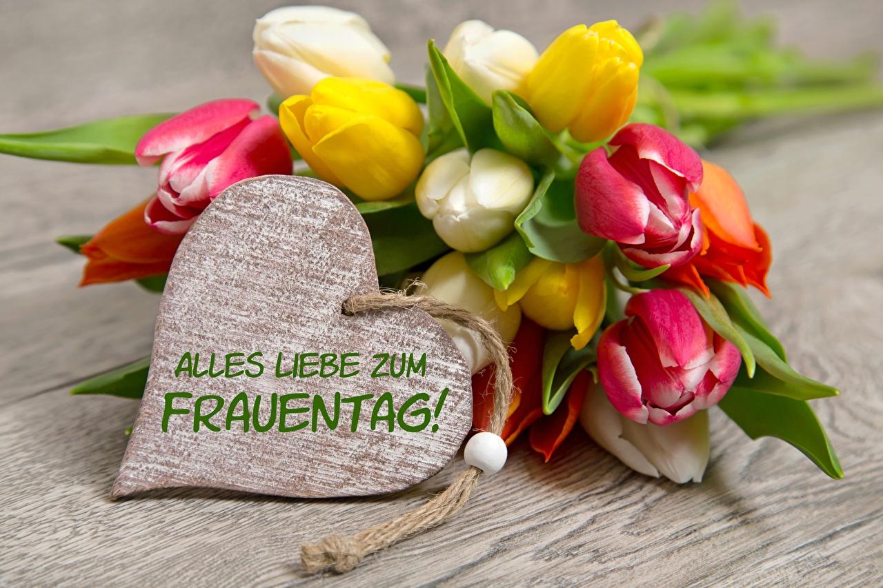 Photo International Women's Day Heart German tulip Flowers March 8 Tulips flower