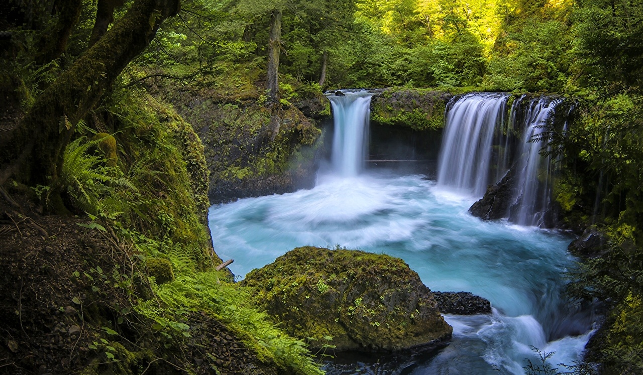 Pictures Washington USA White Salmon Columbia Gorge Nature Waterfalls Forests river forest Rivers
