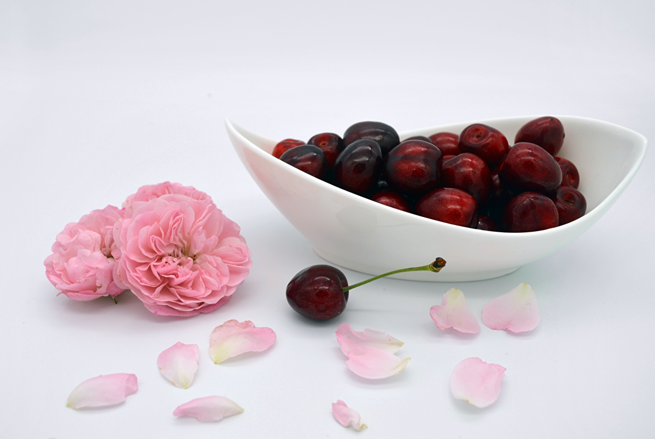 Photo Roses Petals Cherry Food Berry Plate rose