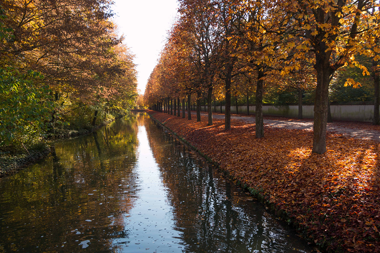 Photos Leaf Germany Garden Schwetzingen Palace Canal Nature Autumn Parks Trees Foliage park